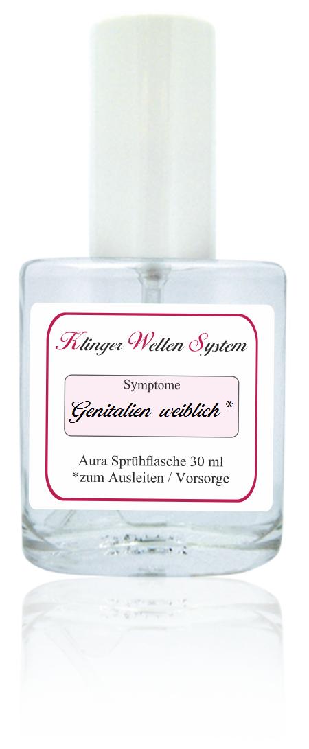 Groß äußeren Genitalien Anatomie Weiblich Galerie - Anatomie Von ...