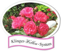 Klinger-Wellen-System